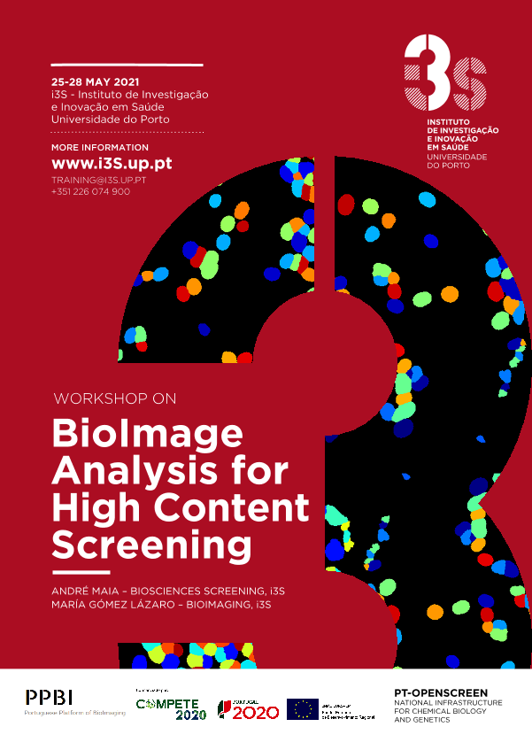 BioImage Analysis for High Content Screening